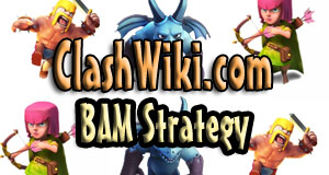 bam strategy